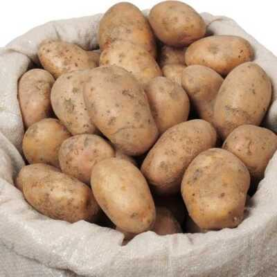 10 lb Bag of Potatoes from Hilltop Acres Poultry