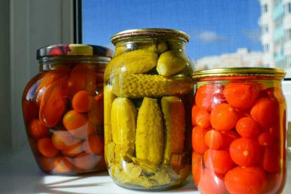 Preserving Freshness with Hilltop Acres